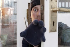 Renters insurance would repay losses from a theft or burglary.