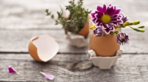 creative spring decorating ideas for Chicago apartments