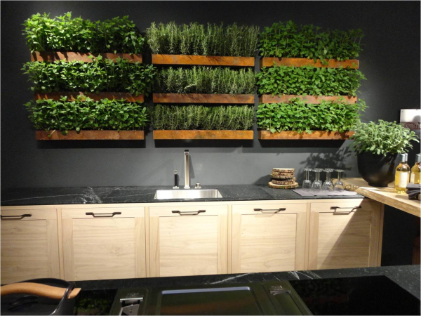 Live wall in kitchen