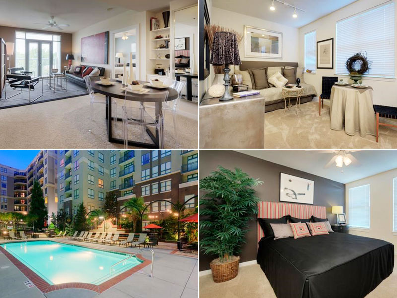 5 Amazing Apartments For Rent In Charlotte Under 900 Month