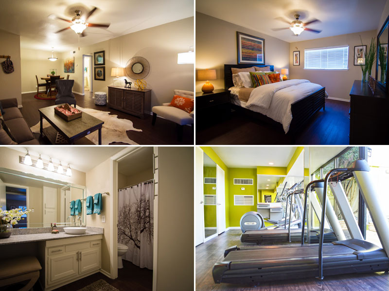 Apartments for Rent in Austin for around $900/month