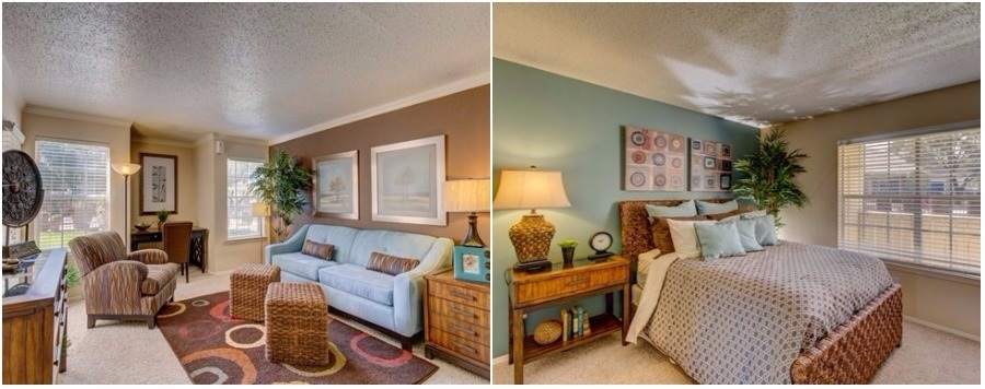 What You Can Rent For 1 000 In Arlington Tx Now Rentcafe Rental Blog
