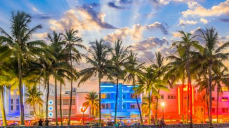 Miami skyline with colorful buildings and palms