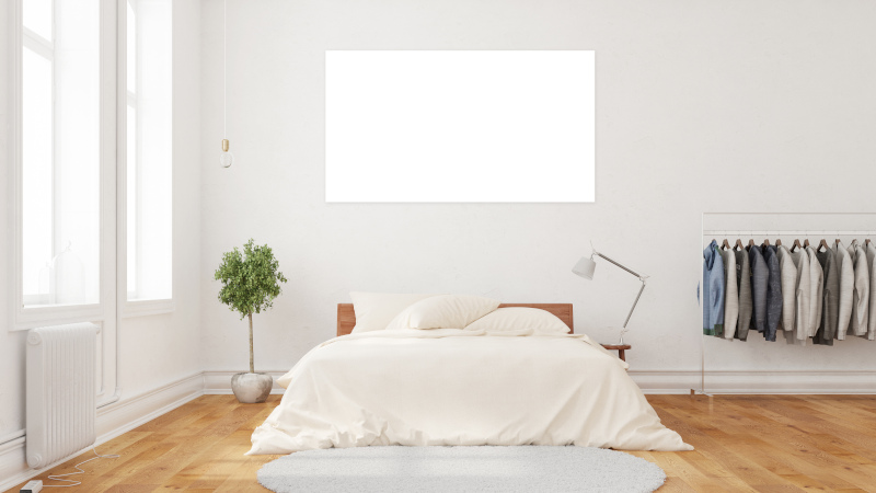 A modern bedroom decor with a bed, plant and an empty wall with a highlighted spot to hang artwork.