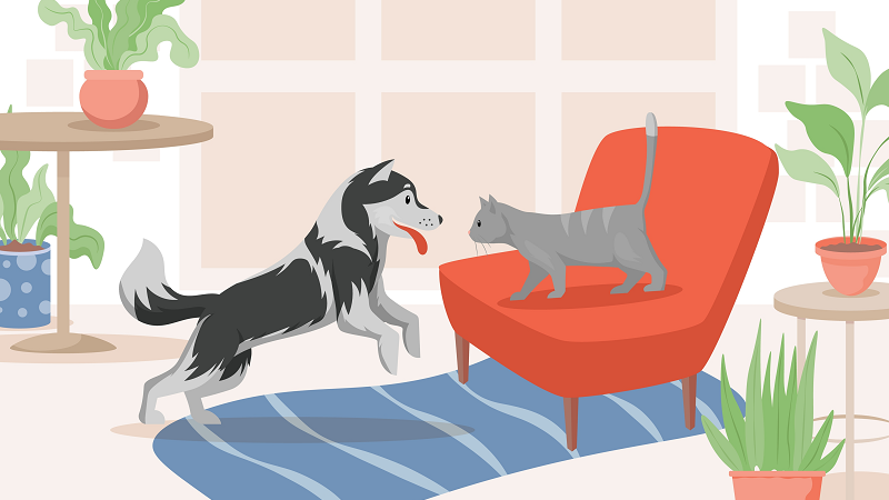 renting with multiple pets